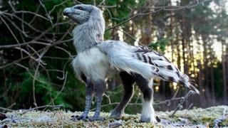 Это Животное Рождается Раз в 1000 Лет