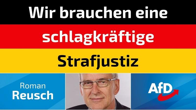 Roman Reusch AfD Wir brauchen eine schlagkräftige Strafjustiz