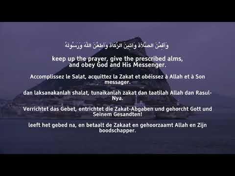 SURAH AL AHZAB INCREDIBLE AYAHS Omar Al Hisham Al Arabic سورة الاحزاب