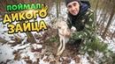 Жизнь в лесу 2 Часть Поймал дикого зайца Заяц тушеный с овощами в казане