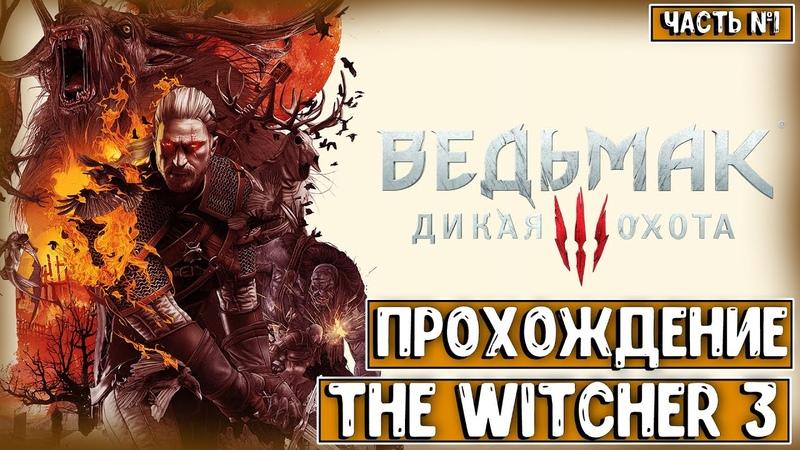 ПРОХОЖДЕНИЕ The Witcher 3 Wild Hunt ИСТОРИЯ ОДНОГО БЕЛОГО ВОЛКА