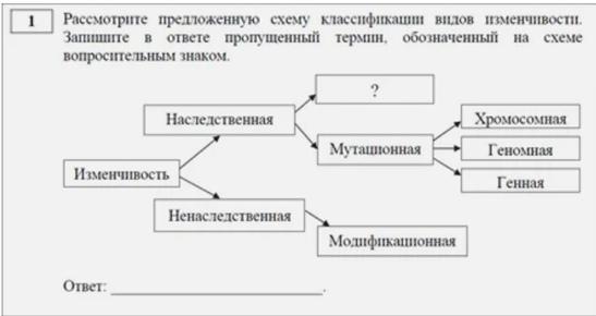 Как готовиться к ЕГЭ по биологии: что нового, сложные задания, советы, изображение №3