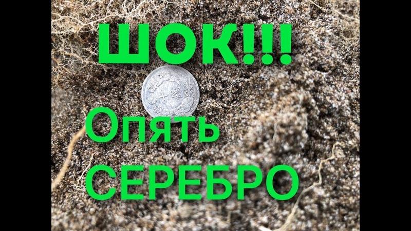 Серебро Карафуто Удача на пляже