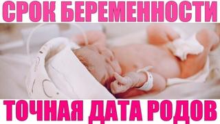 СРОК БЕРЕМЕННОСТИ   Как считать срок беременности правильно недели, месяцы, триместры