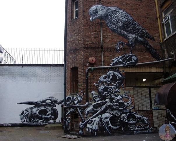 Черно-белый стрит-арт от Roa.