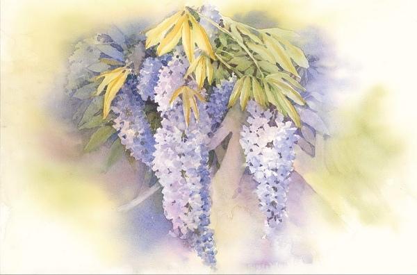 Художница Венди Тейт посвятила всю жизнь изобразительному искусству Нашла свой необычный, волшебный стиль и делится секретами мастерства. Вы научитесь создавать акварельные композиции, полные