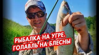 Рыбалка на Угре. Ловля голавля на блесны