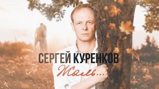 Сергей Куренков - Жаль... (2020) 0+