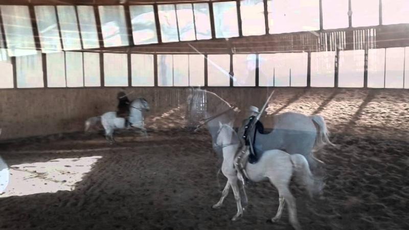 Fencing on Horseback