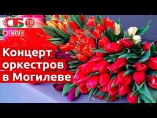 Праздничный концерт оркестров в Могилеве | ПРЯМОЙ ЭФИР