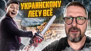 Зеленский побеждает украинский лес?