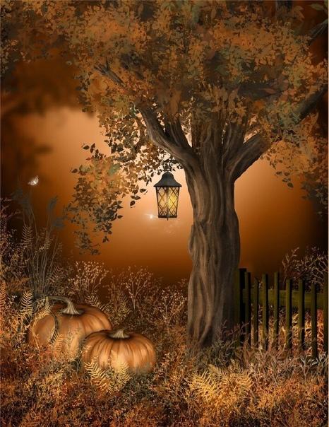 В большом саду,в красивом очень, Где разлетались листья клена. Там падал свет лучами солнца, Даря осеннее тепло нам. Сидел старик под небом этим,И рисовал свою картину. Он сердцем выжигал