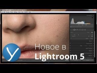 Новое в Lightroom 5 - Новые возможности ретуши (Часть 2)