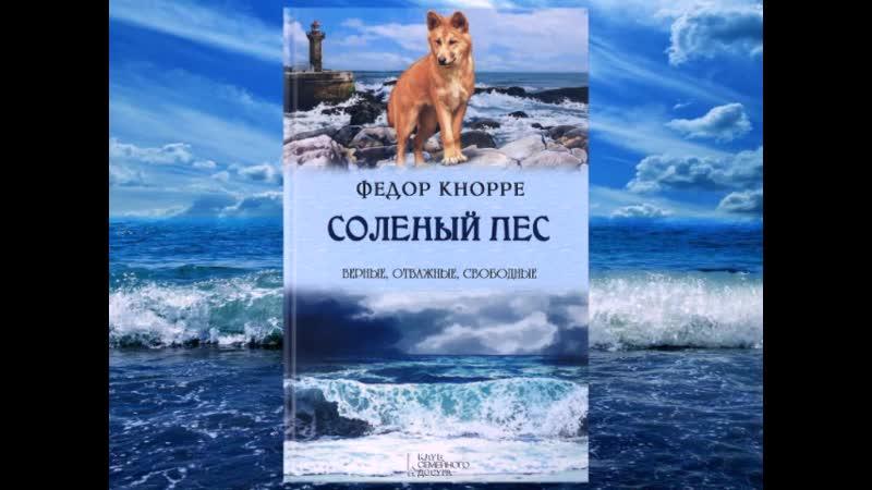 Ф Кнорре Солёный пёс отрывок