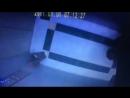 Ссыкуха лифтовая из Омска