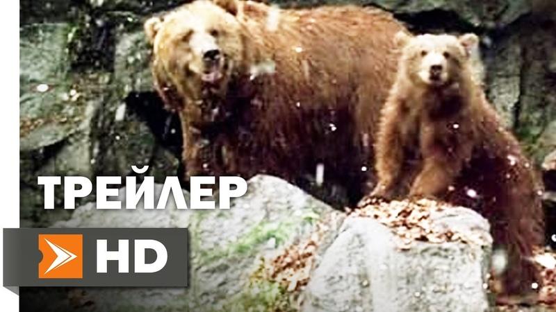 Медведь Официальный Трейлер 2 1988 Жан Жак Анно Медведь Барт