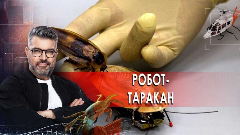 Робот таракан Смартфоны с бумажный лист Морские звёзды Знаете ли вы что 16 03 2021