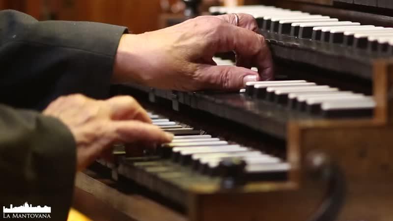 727 J S Bach Herzlich thut mich verlangen BWV 727 Miscellaneous chorale preludes P Bardon organ
