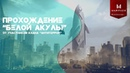 Прохождение рейда Белая акула от клана Антитеррор Warface Console PS4
