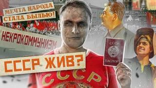 ☭ ГРАЖДАНЕ СССР | Как не платить кредит, налоги, ЖКХ и стать счастливым гражданином зомбилэнда