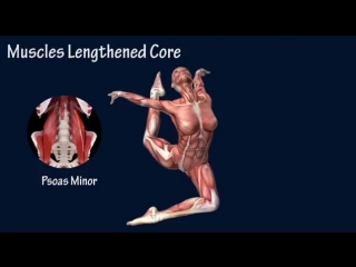 SLs How to Stag Leap Muscle Training Program EasyFlexibility