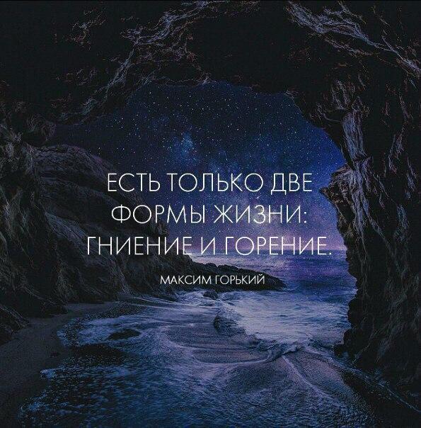 https://sun9-9.userapi.com/c635101/v635101119/1341a/xg0JV_SFpFE.jpg