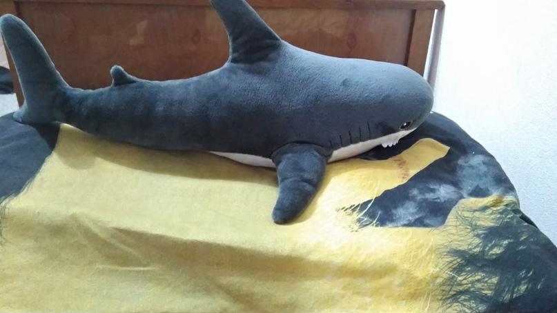 700р Купить акулу с Икеа. Новая, размер   Объявления Орска и Новотроицка №10034