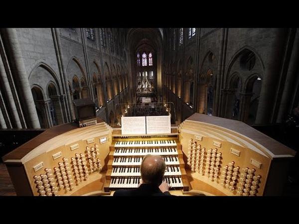 Les travaux de restauration de l'orgue de Notre Dame de Paris ont commencé