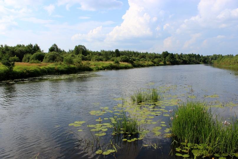 Отчет о путешествии. река Керженец (нижегородская область)   538x807