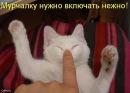 Фотоальбом Ирины Близнец