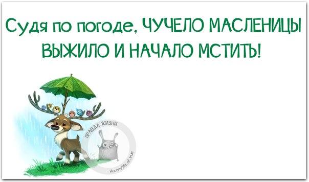 Фото №404494679 со страницы Жени Романовой