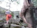 Ta Prohm Камбоджа