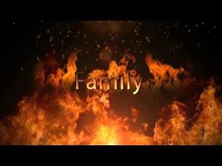 Impulse Fire Family