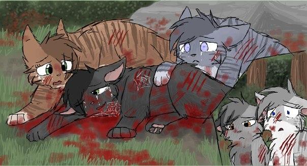 раненые коты воители картинки церковь