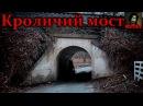 То, от чего стынет кровь - The Bunny man: Убийца с Кроличьего моста