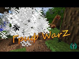 Гриф игрока WarZ [Defuse]