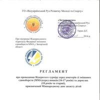 Відкритий турнір серед аматорів ММА м. Запоріжжя