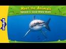 Meet the Animals 1 | Great White Shark | Wild Animals | Little Fox | Animated Stories for Kids