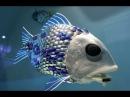 Рыба робот и гормон доверия Веселая наука серия 10 Документальные фильмы National Geographic