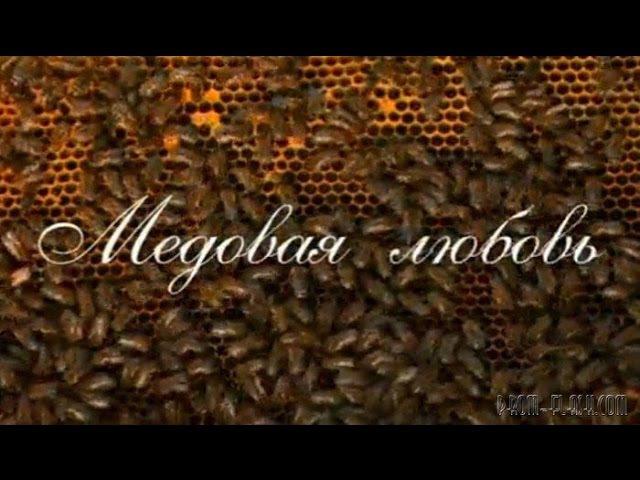 Медовая любовь мелодрама 1 - 4 серия русская мелодрама деревенский фильм Смотреть