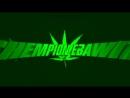 Chempion ebawit. By: Elemesov