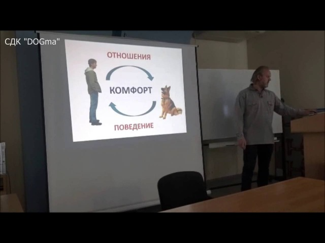 Вводно - теоретическое занятие по СДК DOGma