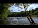 Амазония (Амазонка Питера Бенчли) Amazon (Peter Benchley's Amazon) 1999 s01e06