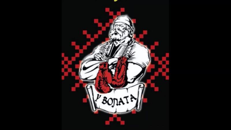 Бокс в Минске Y VOLATA