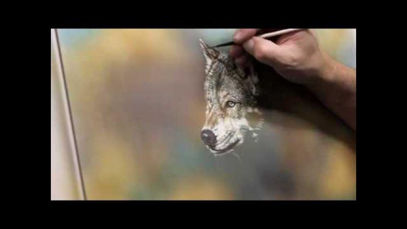 Al Weitzel paints a Blonde Wolf