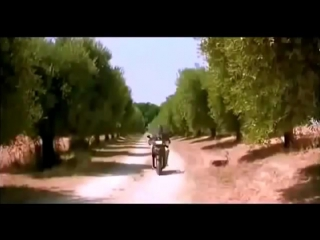 Telling the time by holding the donkey balls (classic italian humor with subtitle)