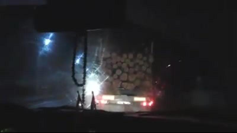 Дорогою із Сарн до Костополя возять нелегальний ліс?