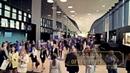 85th Global UFI congress in St Petersburg Expoforum