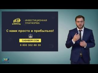 Кэшбери_Презентация для новичков