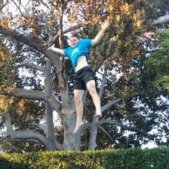 David Williams V on Instagram: Full stall full #workout #fitness #gym #gymnastics #backflip #motivation #freerunning #parkour #fit #grt #challe...
